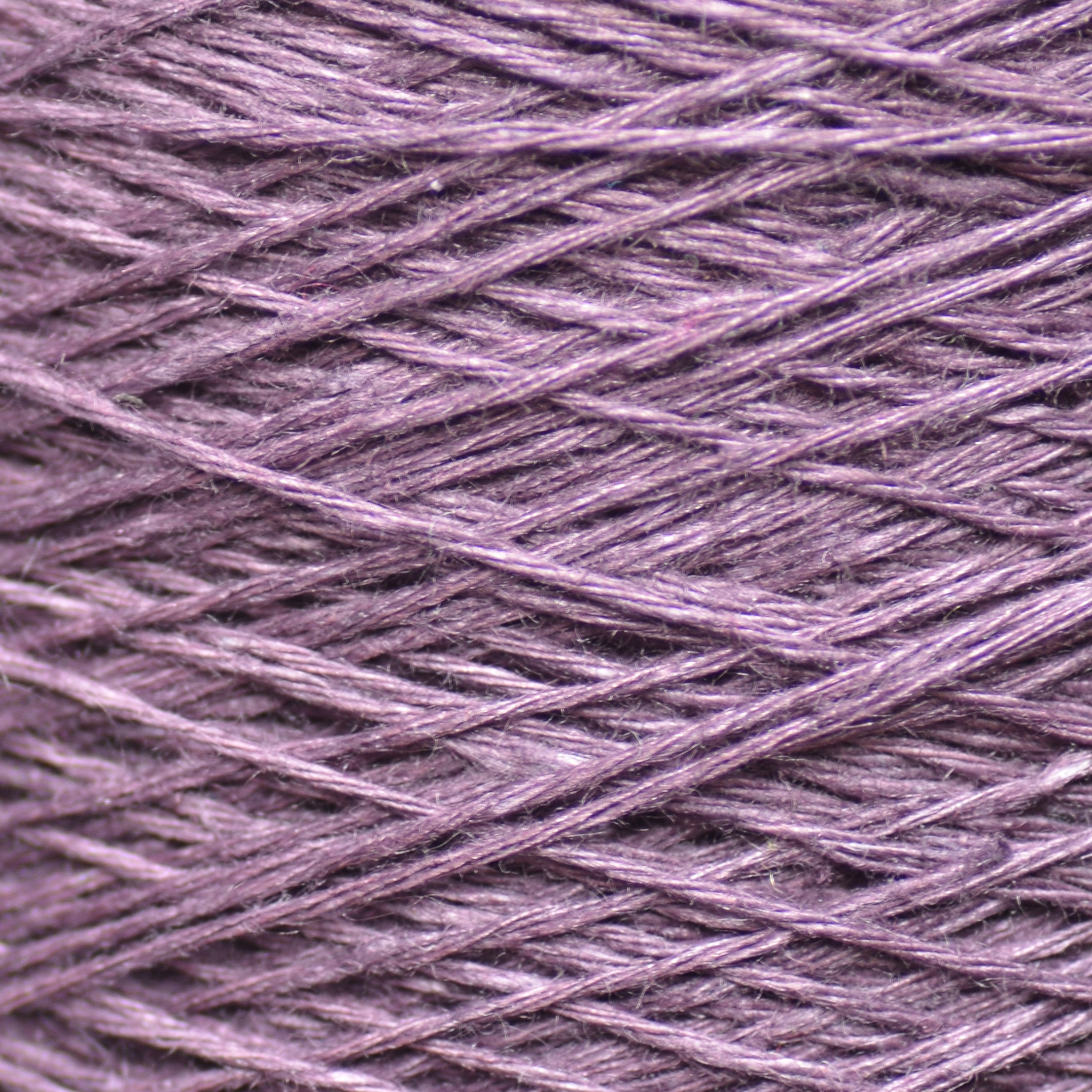 41 Lilac